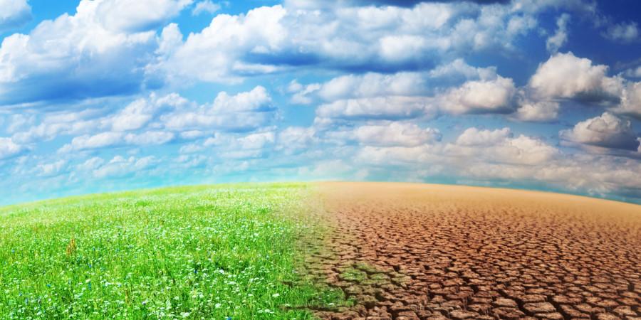 Effets néfastes du changement climatique  : Le stockage du carbone pour atténuer les effets néfastes, un début de solution