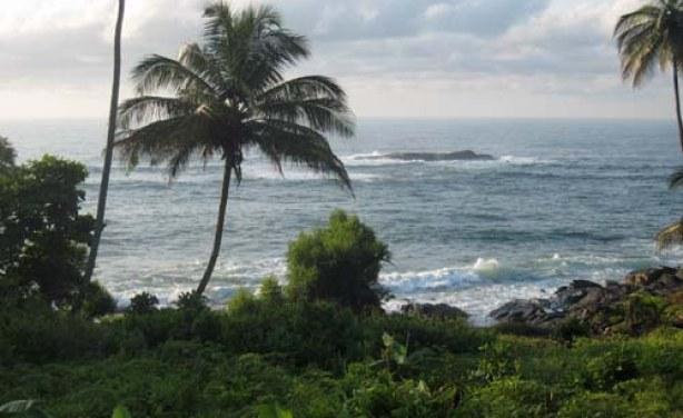 Environnement-écovillages: Signature d'une convention de partenariat entre le PUMA et le REDES