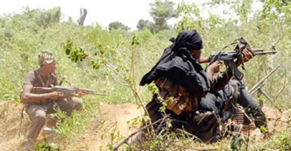 Attaque rebelle à Oussouye plus d'une douzaine de bœufs emportés
