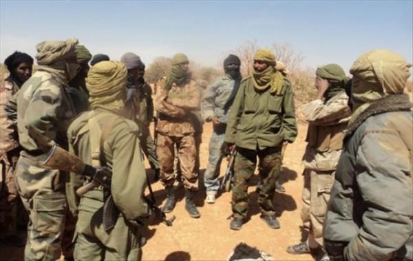 Opération contre-terroristes: 29 personnes arrêtées dans le nord du Mali