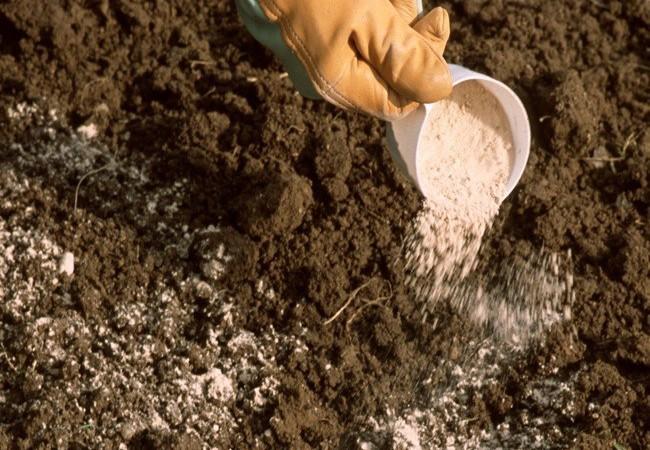 Indice des prix : Un fléchissement de celui des engrais noté,  celui du pétrole raffiné en hausse, Matières premières animales et végétales en baisse…