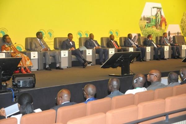 Présidium de la Conférence de Haut niveau Sur L'agriculture