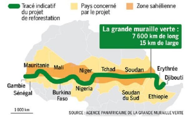 Environnement  Pourquoi la COP 21 doit s'intéresser à la grande muraille verte