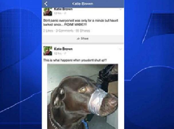 Floride Dérapage sur Facebook,  une femme arrêtée pour affichage de son chien la bouche scotchée