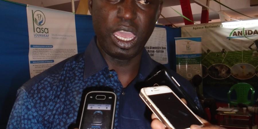 Dr. Omar Ndao Faye, de l'ISRA/Saint Louis: « La recherche est fin prête pour accompagner l'autosuffisance en riz »
