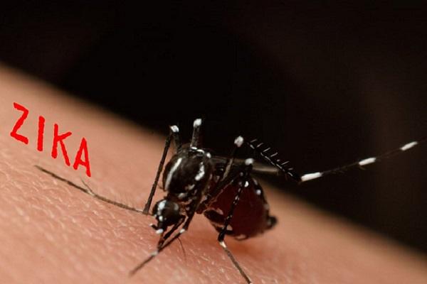 Boston Des scientifiques auraient trouvé un vaccin contre le virus Zika