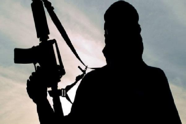 Terrorisme L'armée nigériane annonce la reddition d'un membre clé de Boko Haram