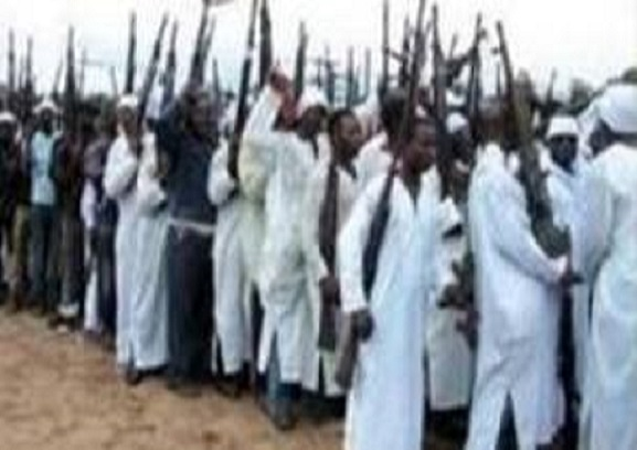 Nigeria : Boko Haram attaque deux îles situées près des  rives du lac Tchad et tue au moins 31 pêcheurs