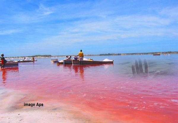 Tourisme : Non ! Le Lac Rose n'est pas inscrit au patrimoine mondial de l'UNESCO