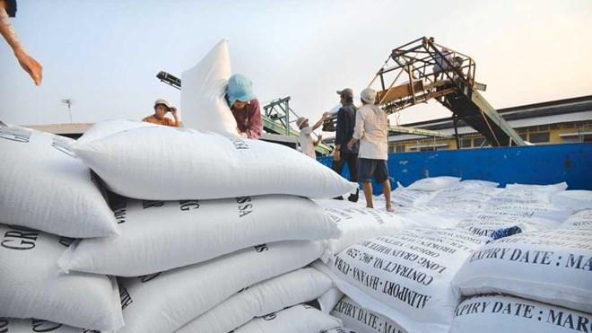 Riz : Une offre mondiale de 596,5 millions de tonnes prévue en janvier 2017