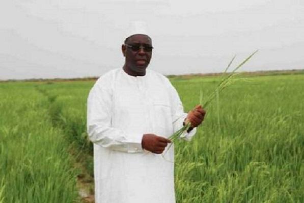 Engagement présidentiel du 3 avril 2016 : les centres de formation en agriculture toujours en attente