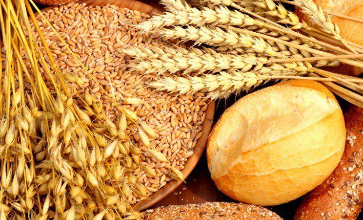 Céréales : Les prévisions tablent sur une offre mondiale de 3175,6 millions de tonnes