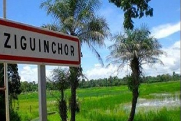 Ziguinchor :  plus de vingt ans après, retour des réfugiés au terroir, retour à la vie…