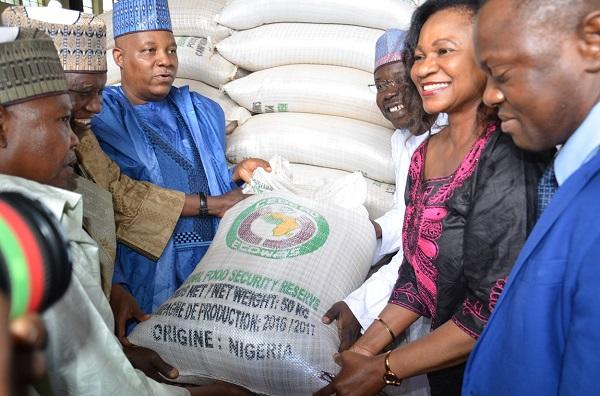 CEDEAO : la Commission au secours des populations du nord-est du Nigeria en proie à une crise alimentaire