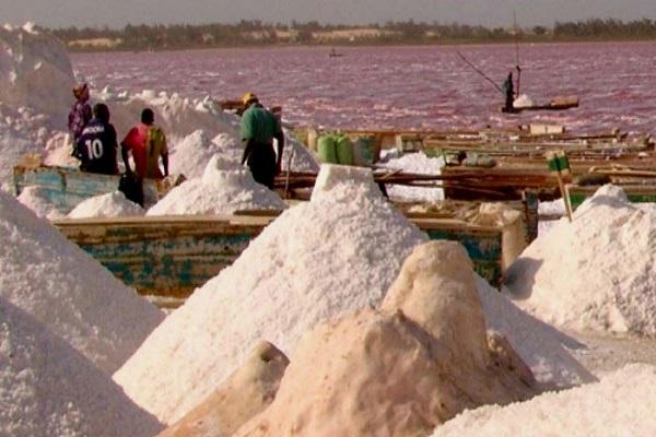 Kaolack: saisie de 85 tonnes de sel non iodé par le service régional du commerce