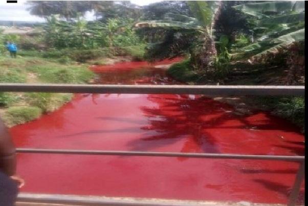 Stupéfaction au Ghana : un cours d'eau se transforme subitement en mare de couleur sang