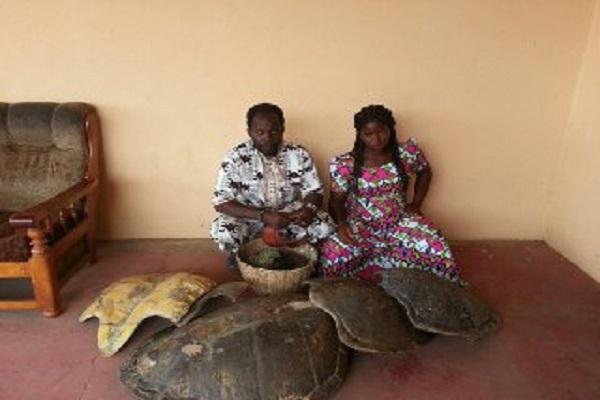 Protection de la faune et de la flore : 6 mois de prison ferme pour un couple de trafiquants de tortue marine