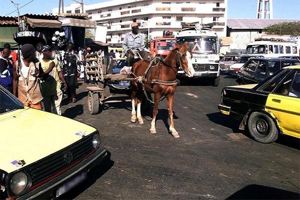 Sécurité : la gendarmerie annonce la fin de la circulation des charrettes dans les grands axes