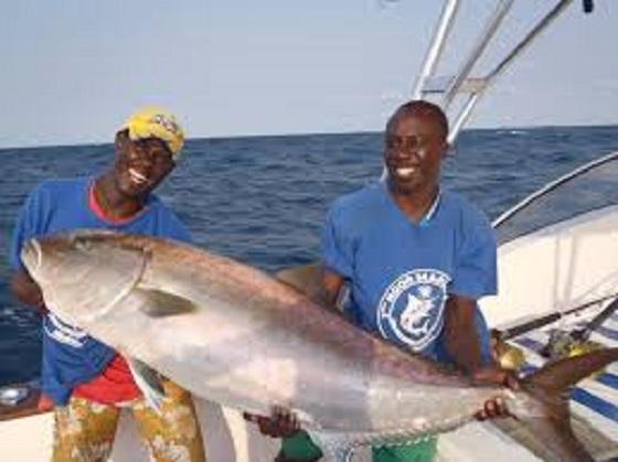 Révélations de M .Oumar Guèye, ministre de la pêche : « Au 31 octobre 2017, on est à 216 milliards FCFA d'exportations »