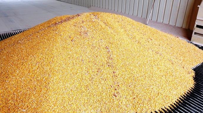 Offre mondiale de céréales  en décembre 2017: Le département américain de l'agriculture table sur  3218,3 millions de tonnes de  céréales