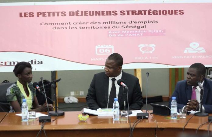 Mamadou Djigo, DG de l'ANAT : « Il faut mettre en place une zone industrielle artisanale qui va faire de l'exploitation des peaux à Touba »