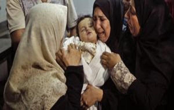 Tuerie gratuite à Gaza : Une pétition lancée pour dire que la vie des Palestiniens compte aussi