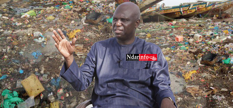 «Insalubrité galopante» et «odeurs nauséabondes» : le Mouvement Wallou NDAR secoue la mémoire de Mansour FAYE