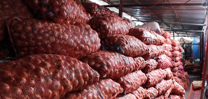 Saint-Louis : une perte de 7000 tonnes d'oignon