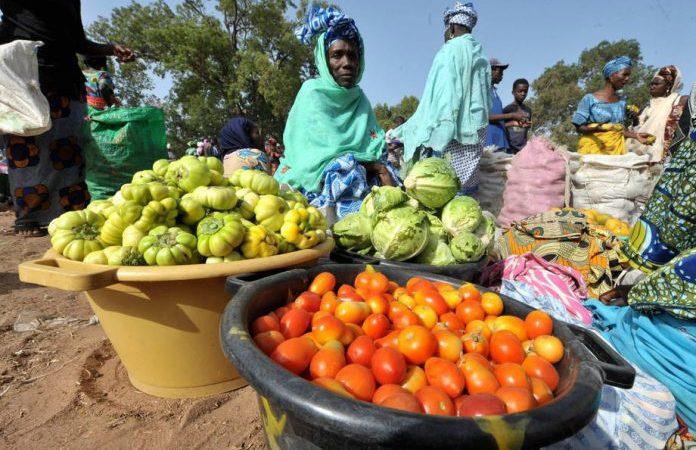 Sécurité sanitaire des aliments au Sénégal et au Burkina Faso : Lancement d'un projet d'amélioration des systèmes nationaux