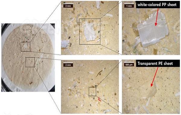 Santé/Révèlations alarmantes d'une étude: Plus de 90% des marques de sel échantillonnées dans le monde contiennent des microplastiques