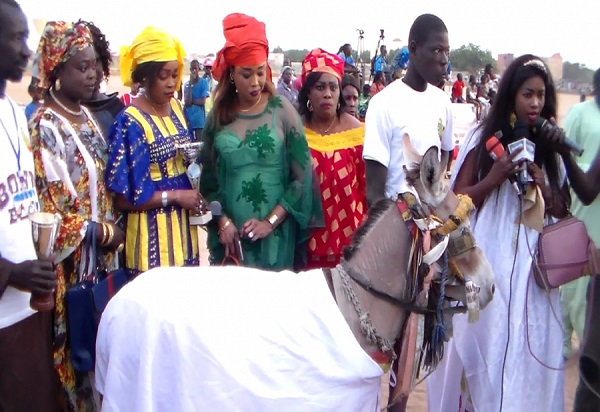 Louga : journée d'équitation, jour de plaidoyer pour un meilleur traitement des ânes et chevaux