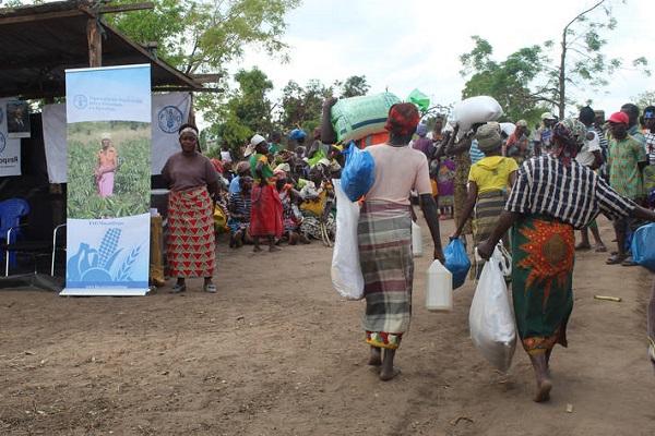 Mozambique : la FAO a démarré la distribution de semences et d'outils indispensables dans ce pays très touché par le cyclone Idai