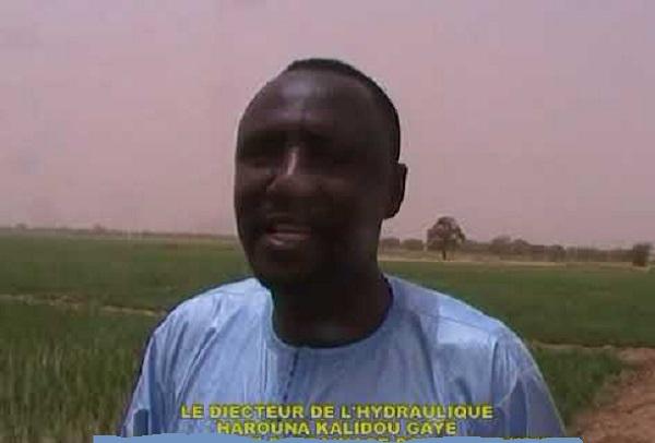Sanction jugée arbitraire et sans fondement : une lettre Ouverte adressée à Harouna Kalidou Gaye  Directeur de l'Hydraulique