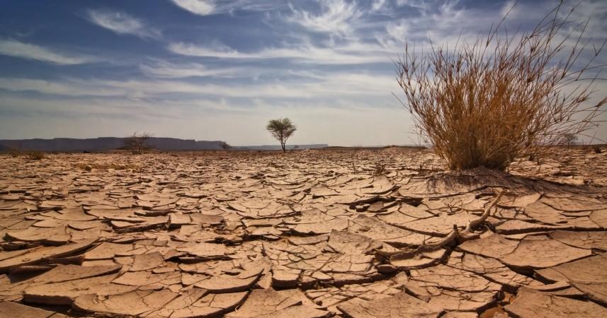 Réchauffement climatique en Afrique: des millions de personnes vont basculer dans la pauvreté et la faim si les gouvernements n'agissent pas rapidement