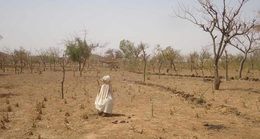 L'Afrique très exposée au changement climatique, des experts venus de plus de vingt pays à son chevet
