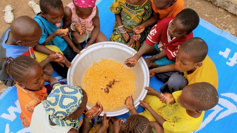 Lutter contre la malnutrition sous toutes ses formes et promouvoir l'innovation agricole : les deux priorités que se fixe la FAO pour les deux années à venir