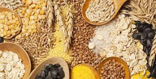 Céréales : Malgré un niveau record, la production mondiale devrait rester en deçà de la consommation mondiale, selon la FAO.