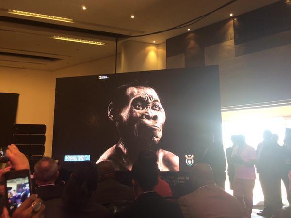 Le genre humain s'enrichit : une ancienne espèce jusque-là inconnue découverte en Afrique du Sud