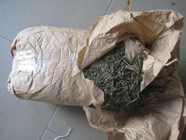 Fatick: saisie de 182 kg de chanvre indien d'une valeur estimée à  plus de 13 millions de F CFA