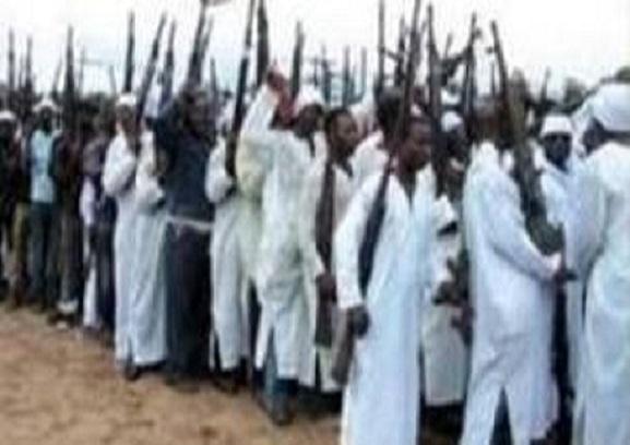 Niger : les enlèvements contre rançon érigés en mode par les éléments de Boko Haram