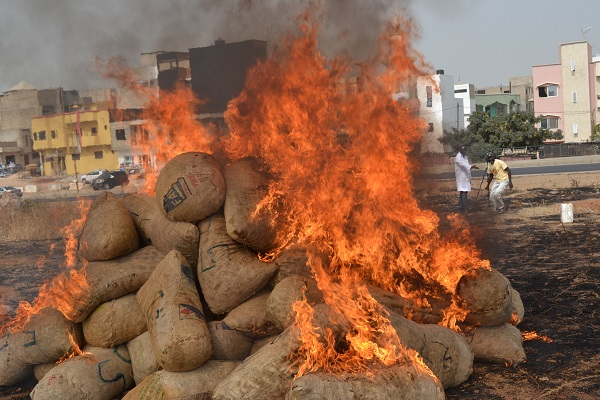 Toglou : Plus d'un demi-milliard de francs Cfa de produits impropres incinérés