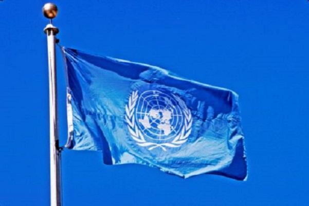 La sécurité alimentaire : ce que la nouvelle résolution de l'ONU peut apporter contre certaines maladies