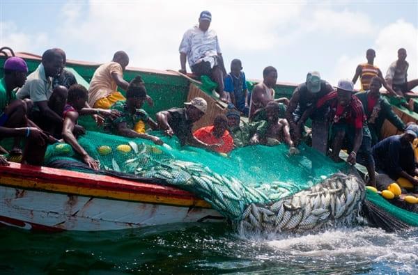 Pêche artisanale : la Déclaration la CAOPA pour la célébration de la Journée Mondiale du Nettoyage