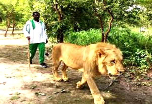 Le royaume d'Oussouye : une royauté sacrée au cœur de la Casamance