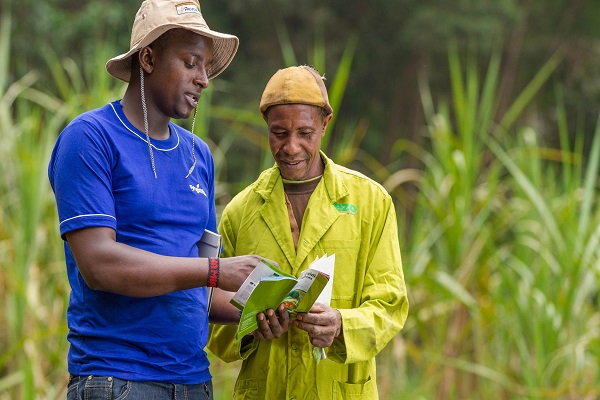 Afrique/Agriculture : 5  ans après, l'ambition de Syngenta porte ses fruits, mais l'accès des petits exploitants à la technologie reste limité