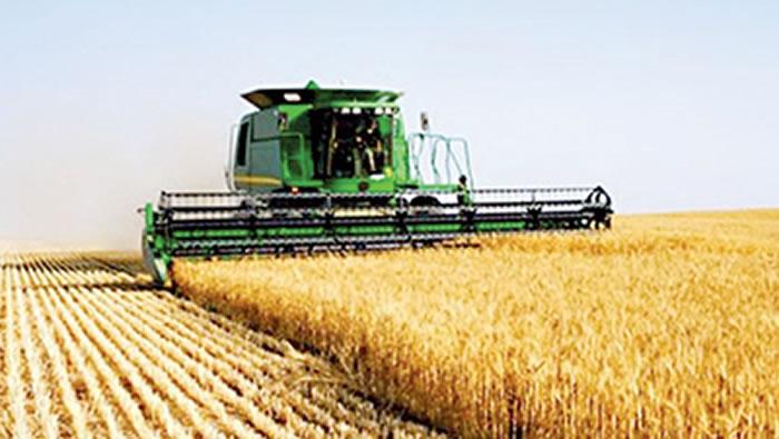 Campagne 2017-2018 de Blé tendre français : L'USDA table sur une offre mondiale de blé de 1010,5 millions de tonnes