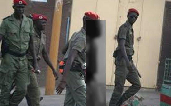 Guédiawaye : un homme appréhendé avec un sac rempli de viande de chien, échappe à la mort