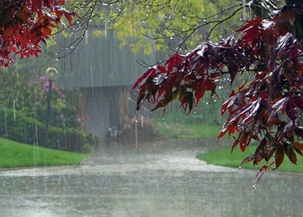 Tabaski 2019 : Le président sollicite des prières pour un hivernage pluvieux