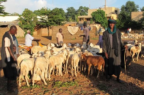 Mali : un rapport de l'ONU attendu après l'assassinat de 37 peuls au centre du pays