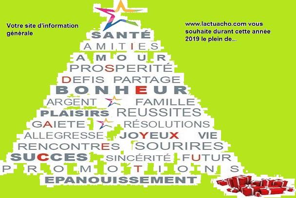 Nouvelle année 2019: vote site d'actualité www.lactuacho.com vous souhaite une excellente 2019